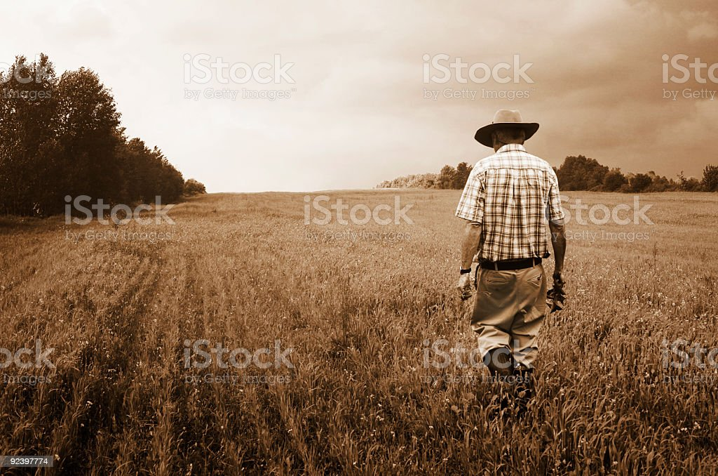 Lone Farmer Walks into his misty field sepia toned stock photo