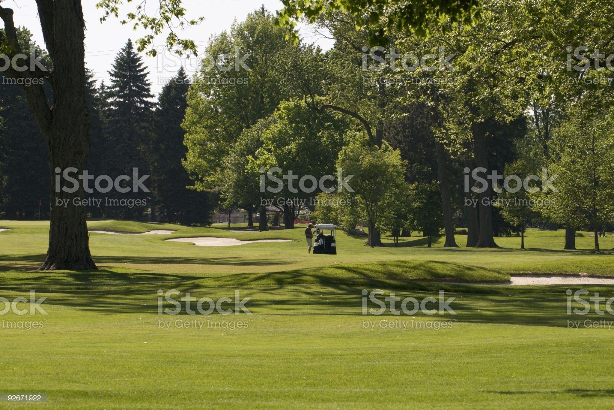 Lone Golfer royalty-free stock photo