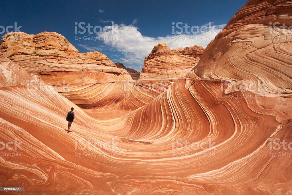 Lone hiker at Arizona's Wave stock photo