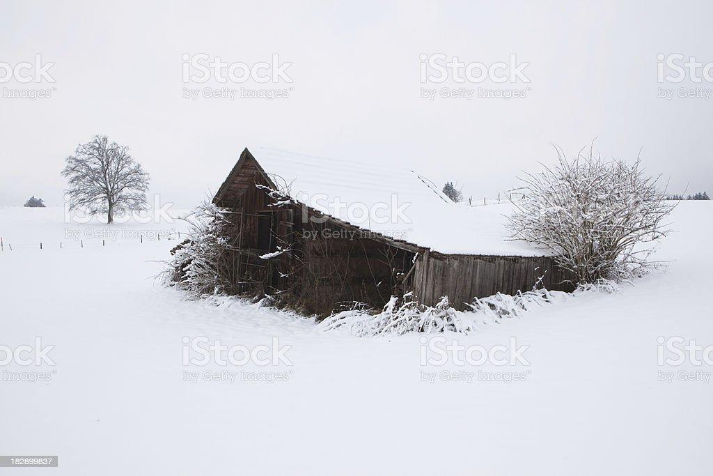 lone hut in the bavarian allgäu -germany royalty-free stock photo