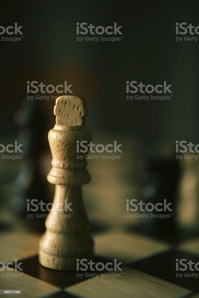 Lone King royalty-free stock photo