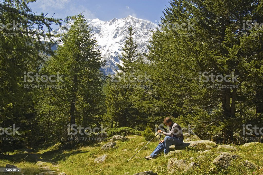 Lone man in the forest royalty-free stock photo
