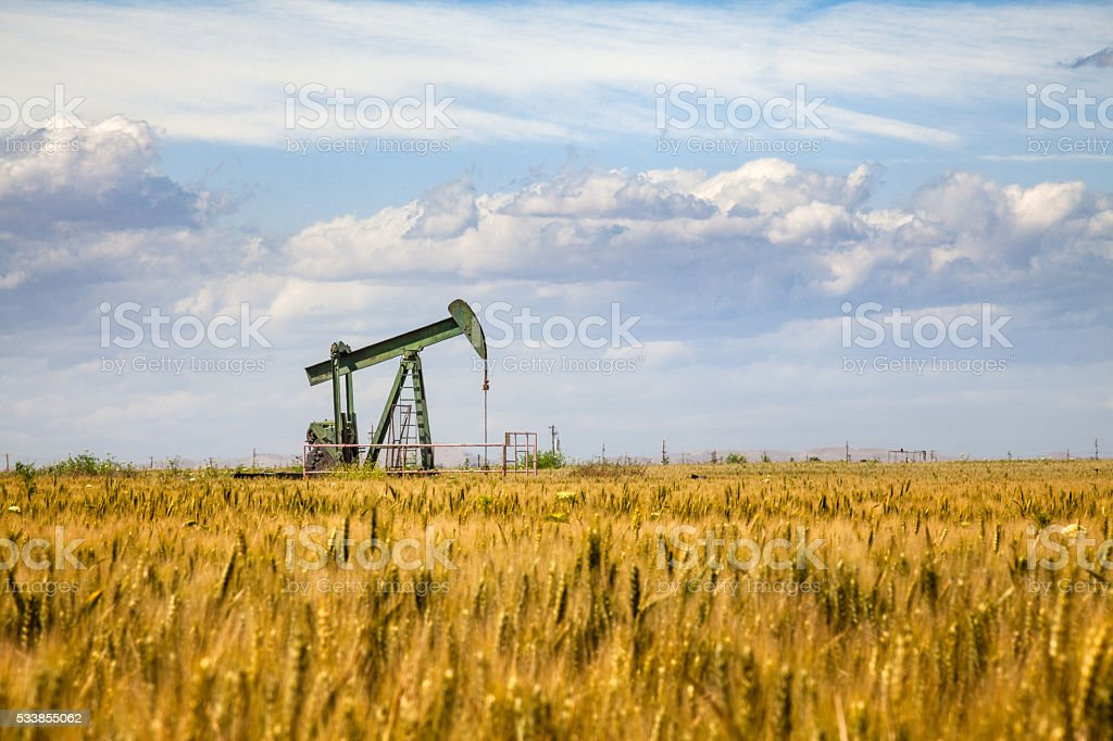 Lone Oil Pumpjack Amidst A Field of Golden Wheat stock photo