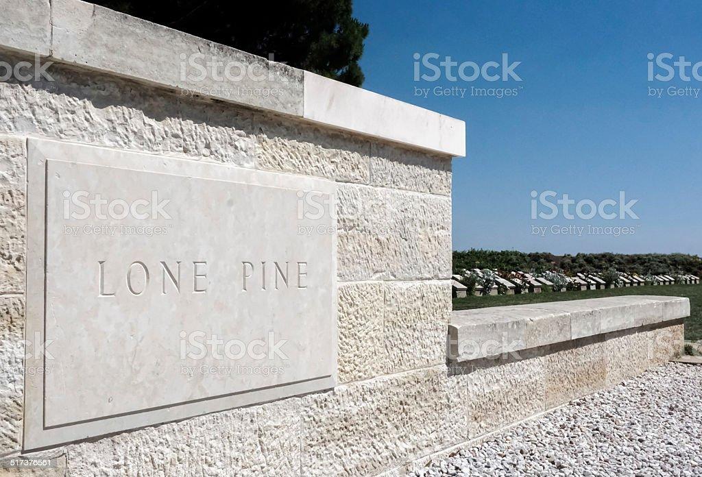Lone Pine stock photo