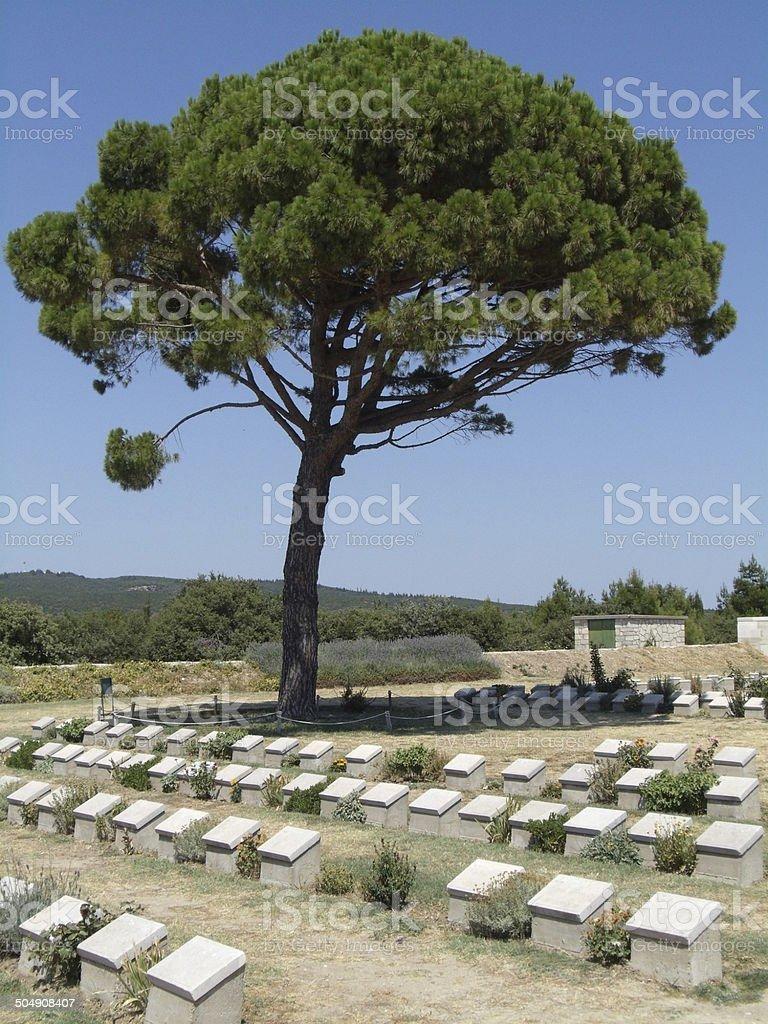 Lone Pine War Memorial in Gallipoli, Turkey stock photo