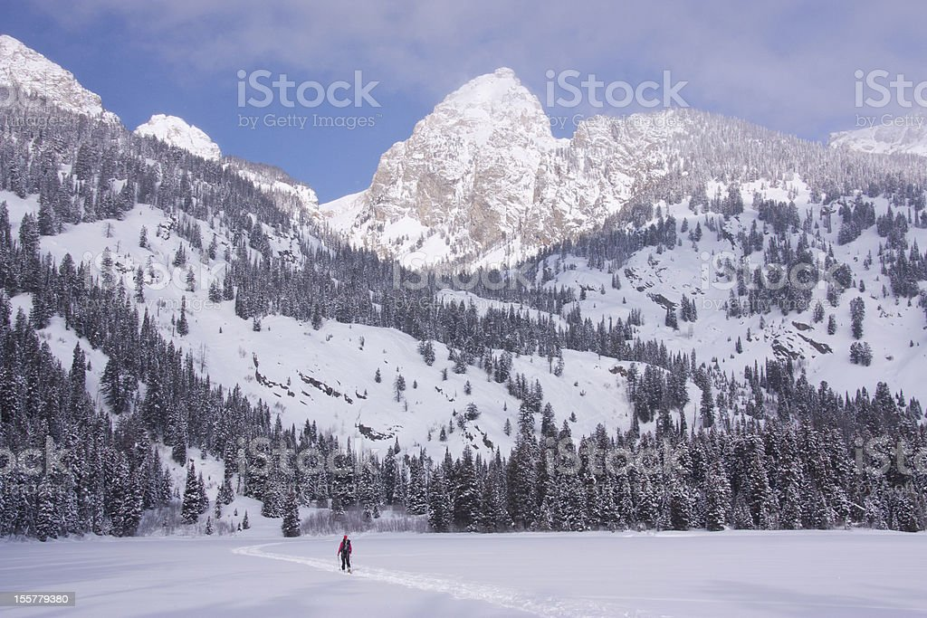 Lone skier in the snowy mountains of Wyoming royalty-free stock photo