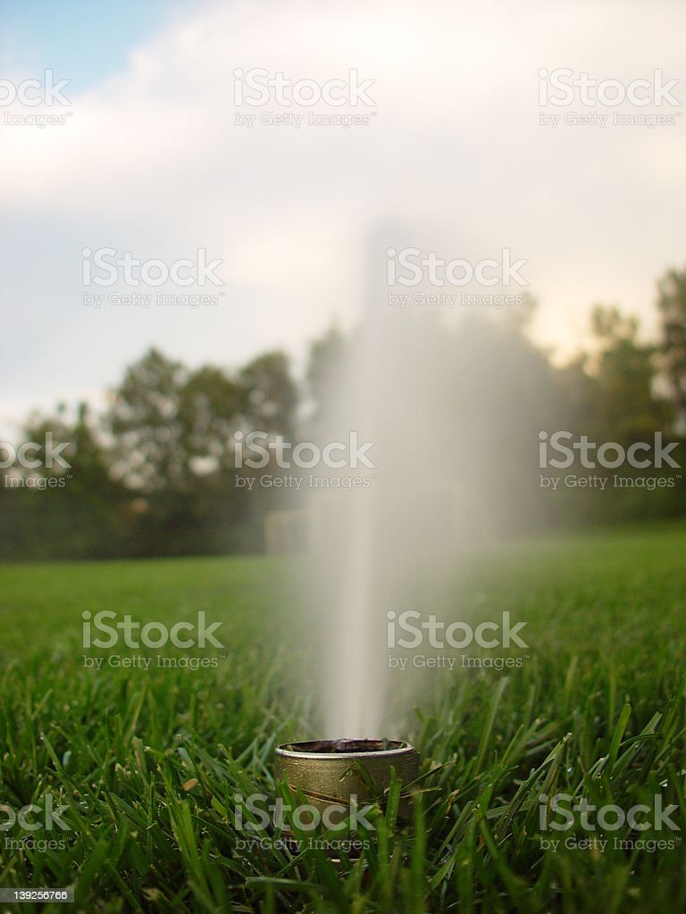Lone Sprinkler stock photo