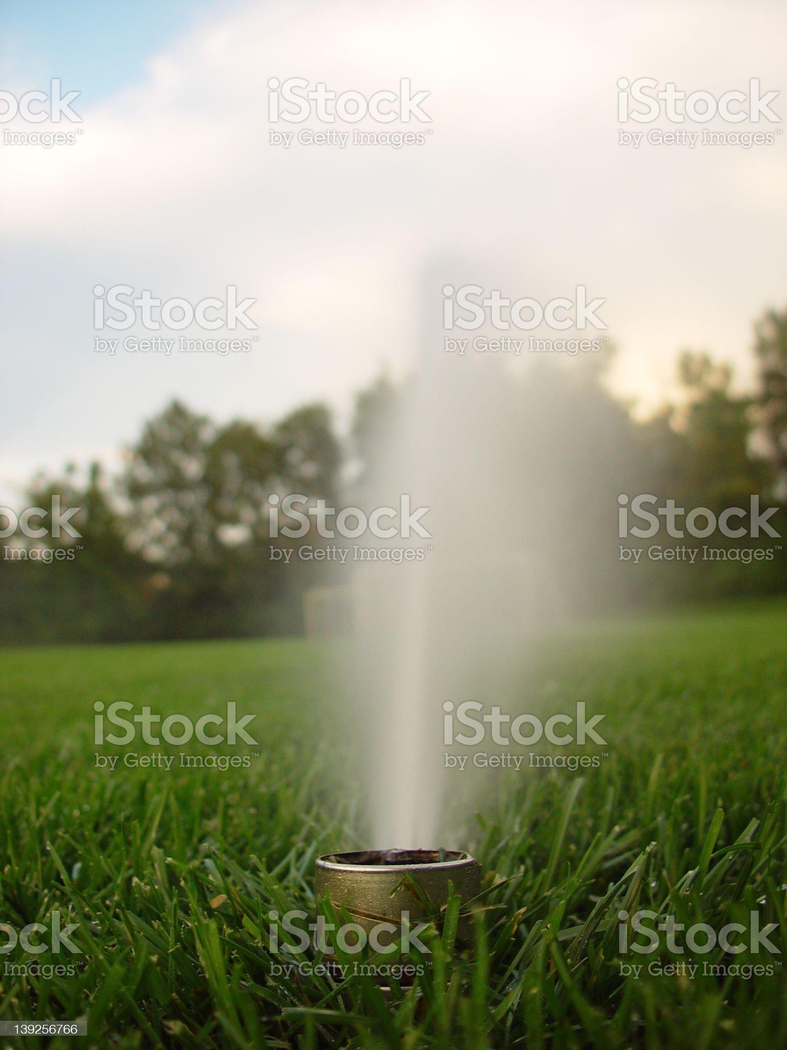 Lone Sprinkler royalty-free stock photo