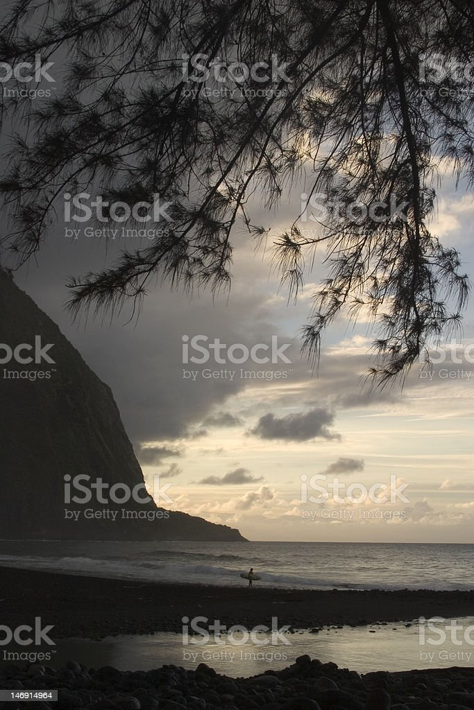 Lone surfer stock photo