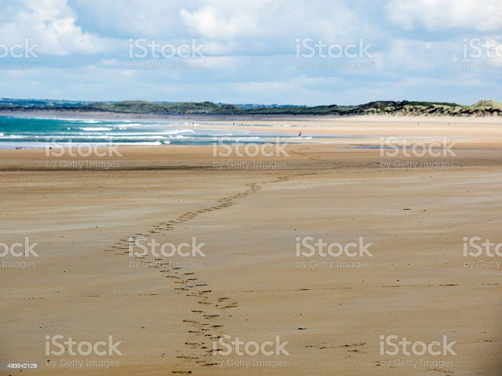 lone tracks on the Beach stock photo