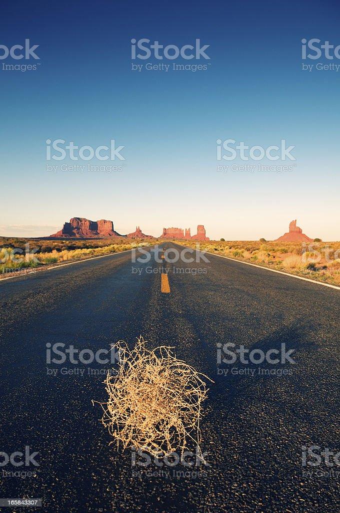 Lone Tumbleweed Sits on Desert Road stock photo