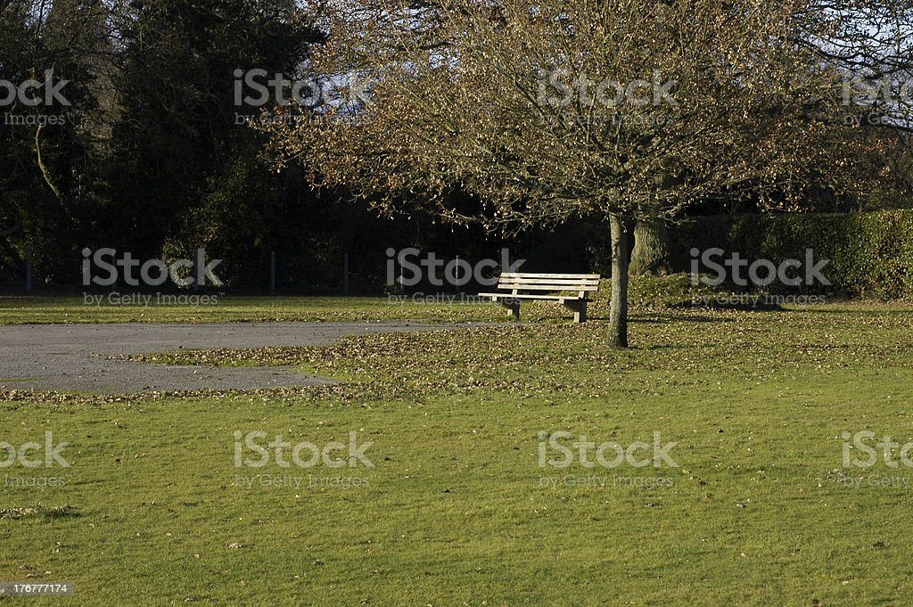 Lonely autumnal park bench stock photo