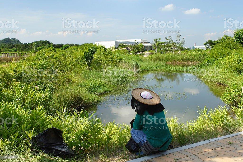 Lonely farmer stock photo