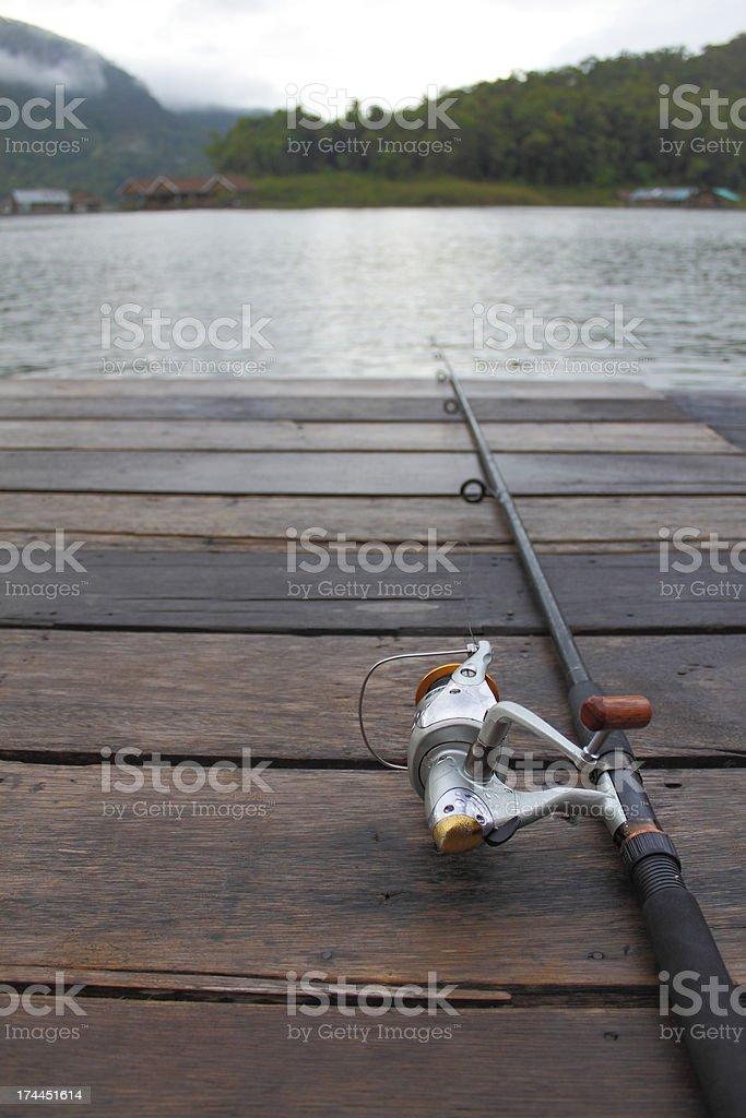 Samotny ryby na wakacje zbiór zdjęć royalty-free
