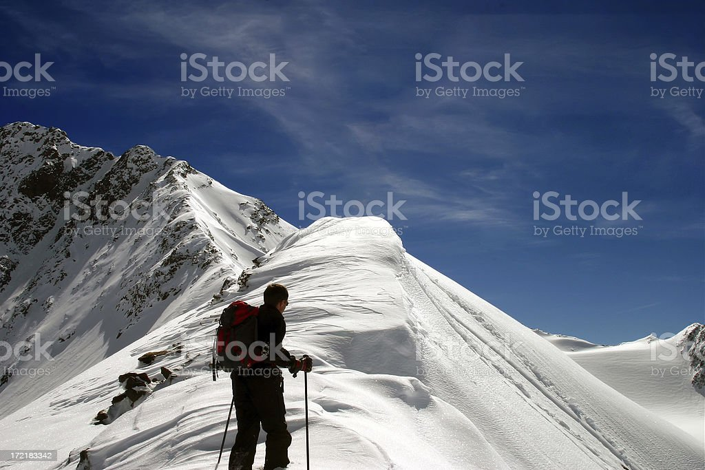 Lonely Ice Trekker royalty-free stock photo
