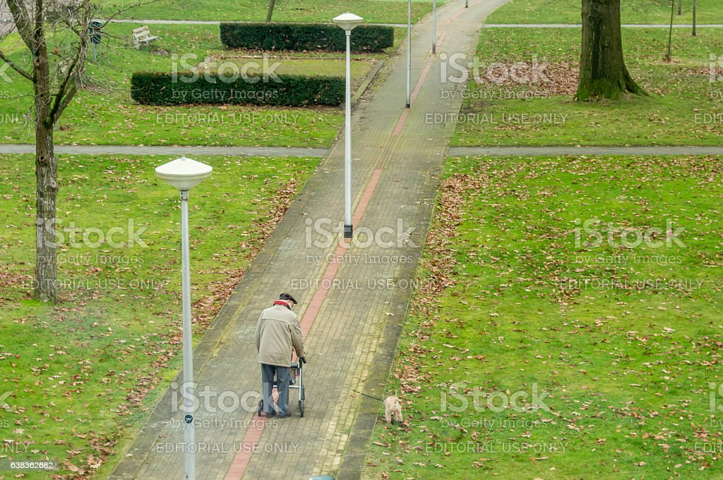 Lonely old man, walking his dog stock photo