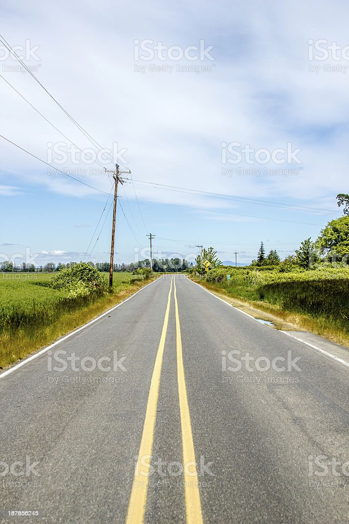 Lonely Road on Sauvie island stock photo