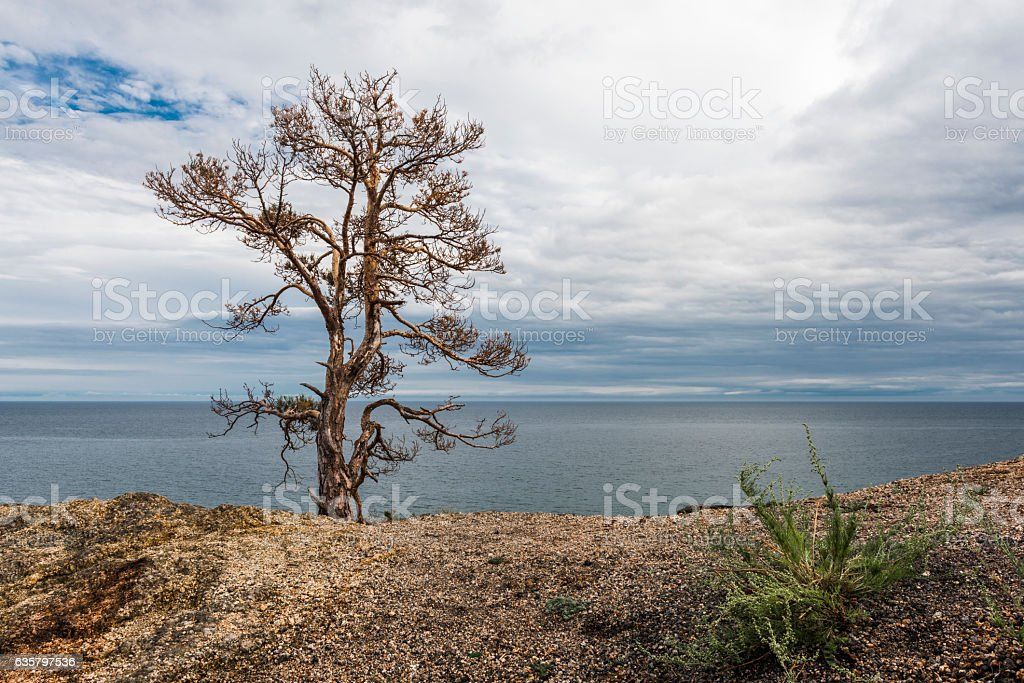Lonely rock on the edge of the cliff stock photo