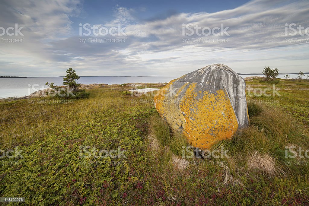 Lonely stone on seacoast in the evening royalty-free stock photo