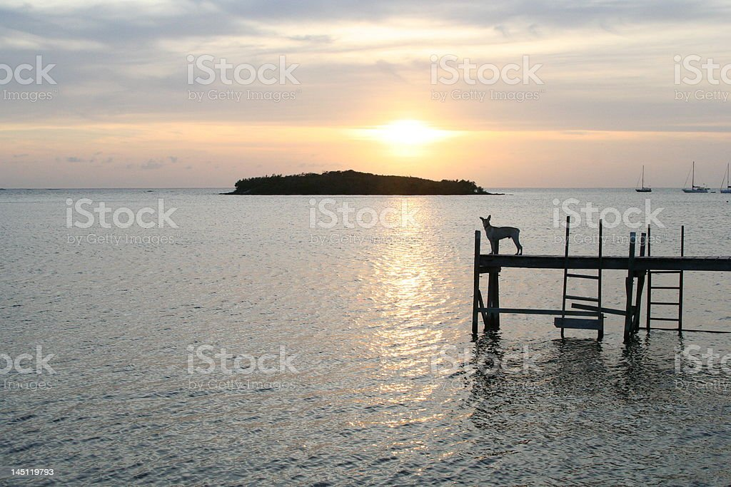 Lonely Sunset stock photo