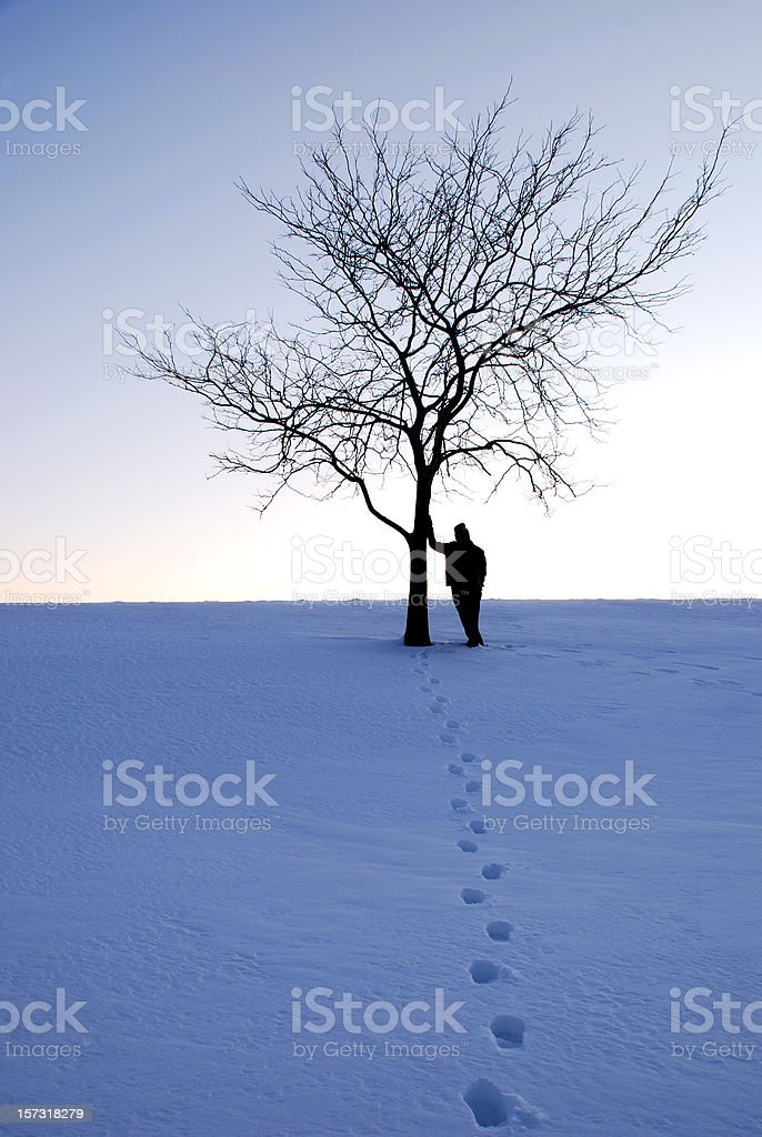 Lonely tree and a person stock photo