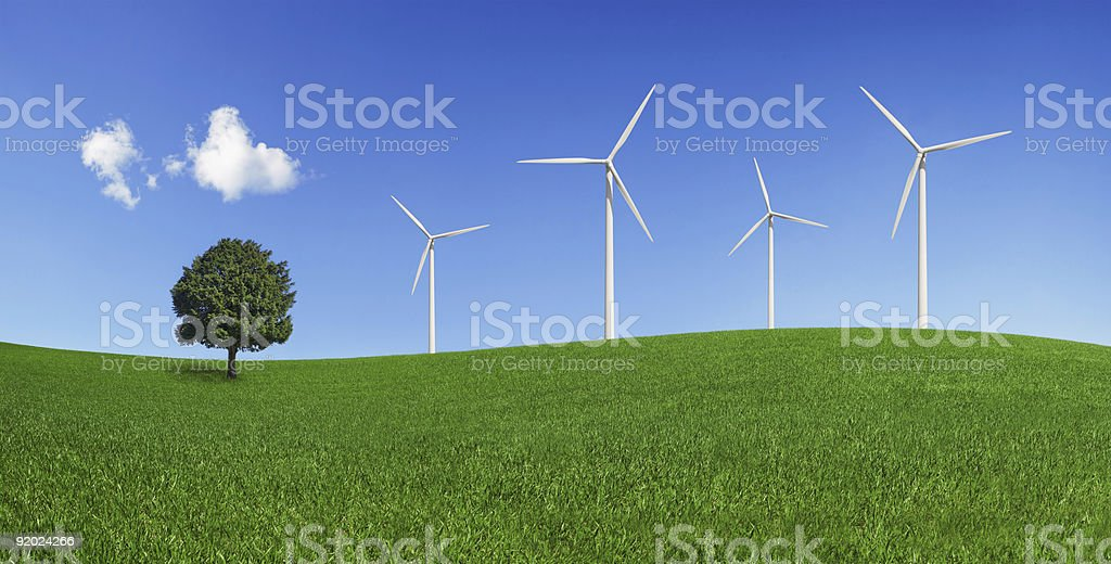 Lonely tree and wind turbines on a green field (XXXLarge) stock photo
