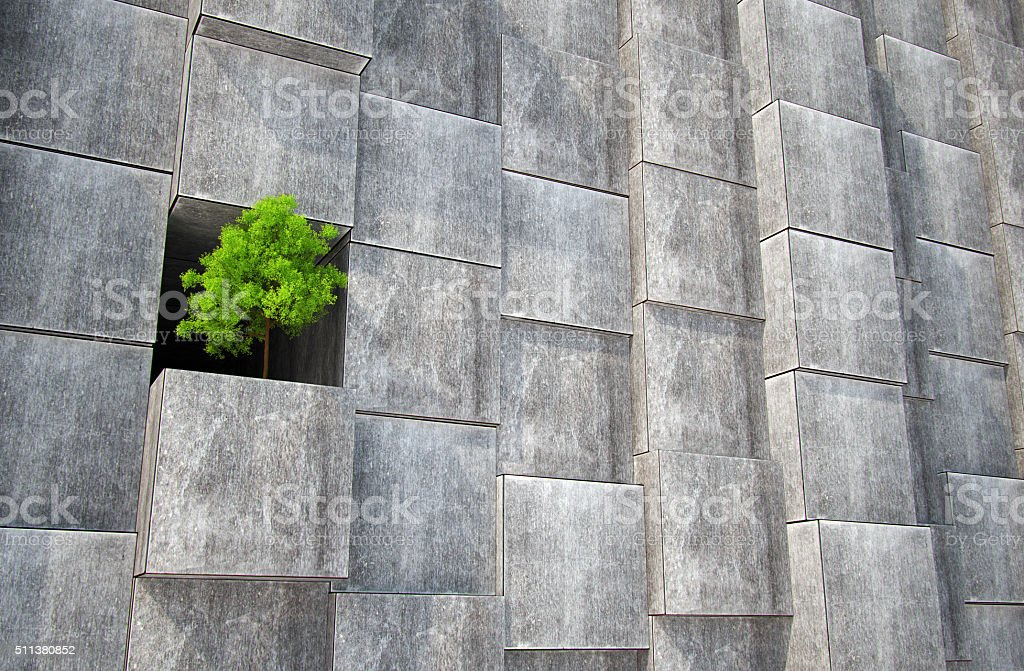 Lonely tree in concrete stock photo