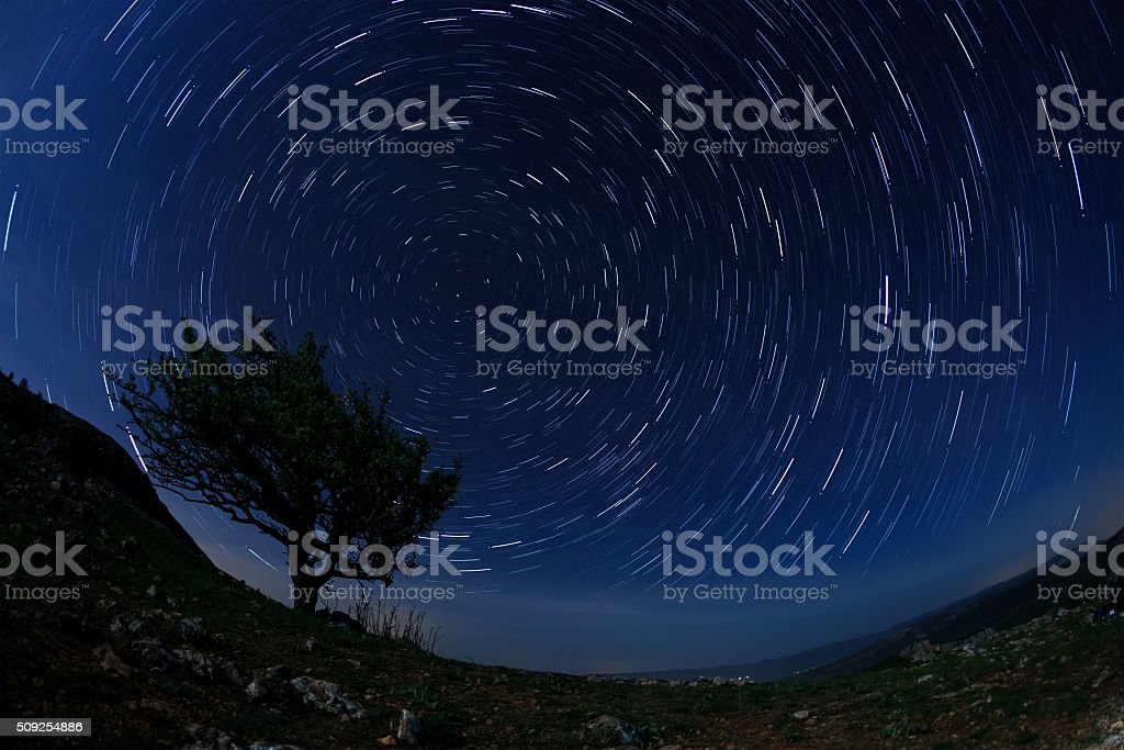 Lonely tree in the night sky with moving stars stock photo