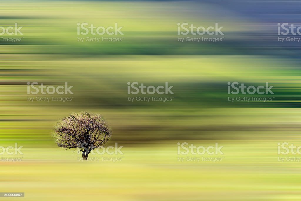 lonely tree on abstract background with motion effect vector art illustration