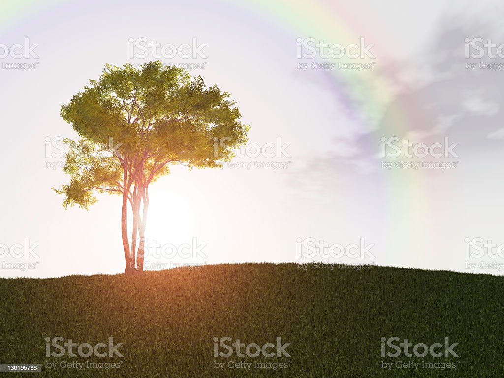 Lonely tree with rainbow royalty-free stock photo