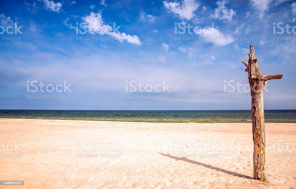lonesome beach of the Baltic Sea stock photo