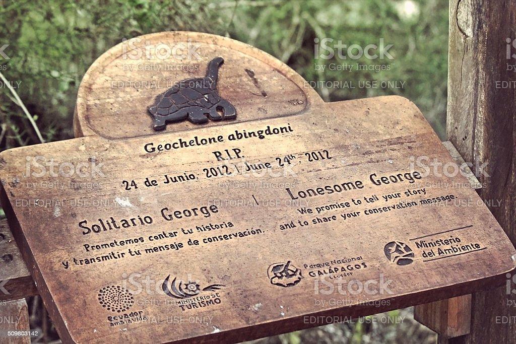 Lonesome George stock photo