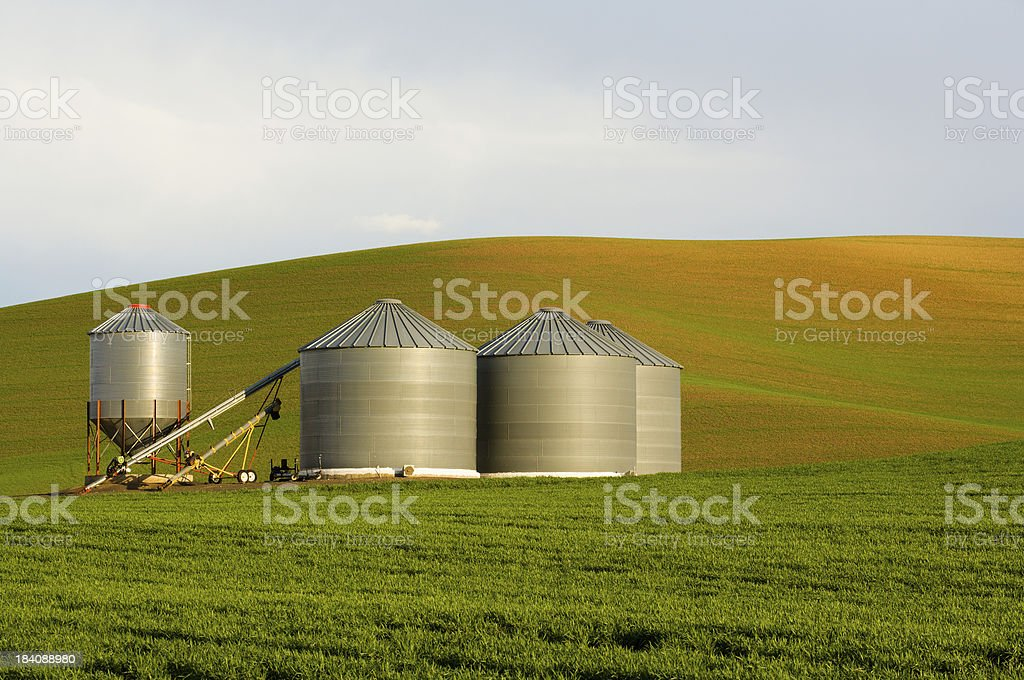 Lonesome Grain Bins on the Farm royalty-free stock photo