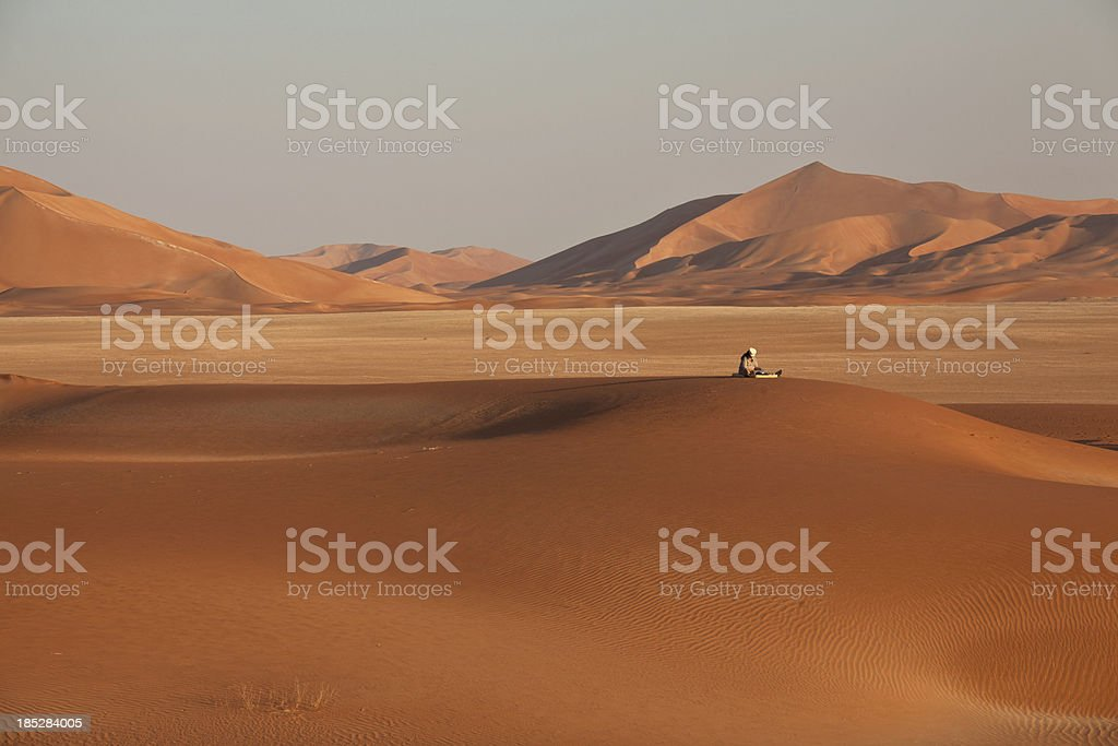 Lonesome in the desert royalty-free stock photo