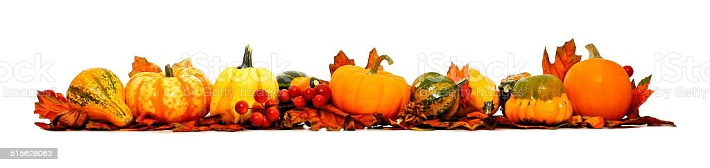 Long autumn border of pumpkins, gourds and leaves stock photo