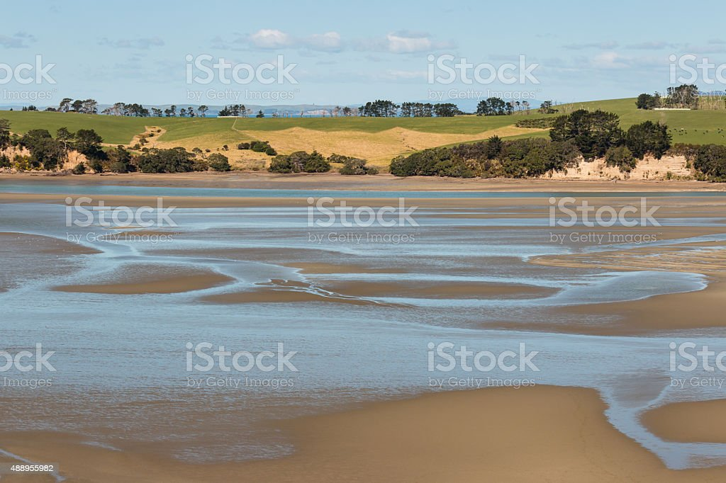 Long Bay beach at low tide, New Zealand stock photo