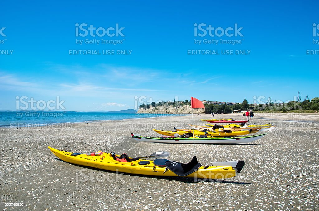 Long Bay Beach Park in Auckland,New Zealand. stock photo