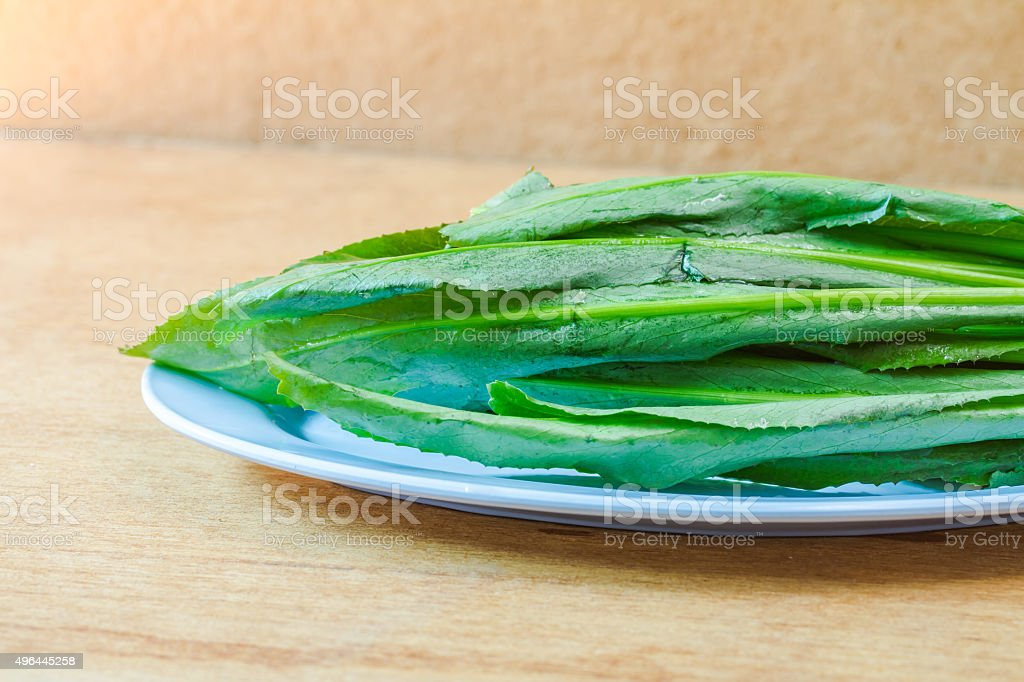 long coriander leaves in dish on wooden table stock photo