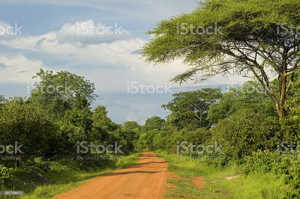 A long dirt road in rural Africa stock photo