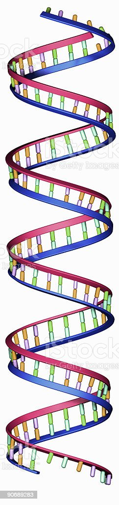 Long DNA Strand royalty-free stock photo