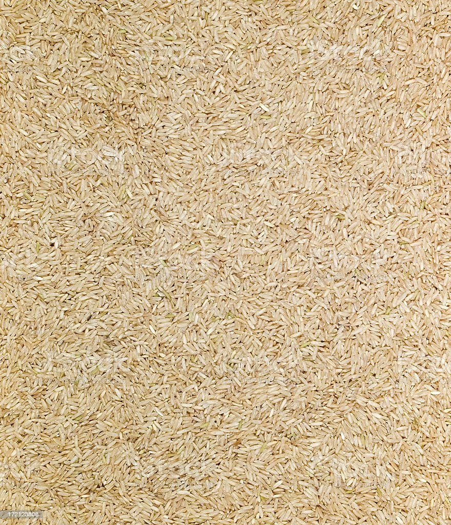 Long Grained Rice stock photo