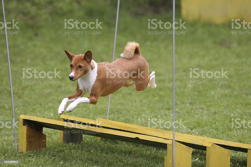 Long Jump stock photo