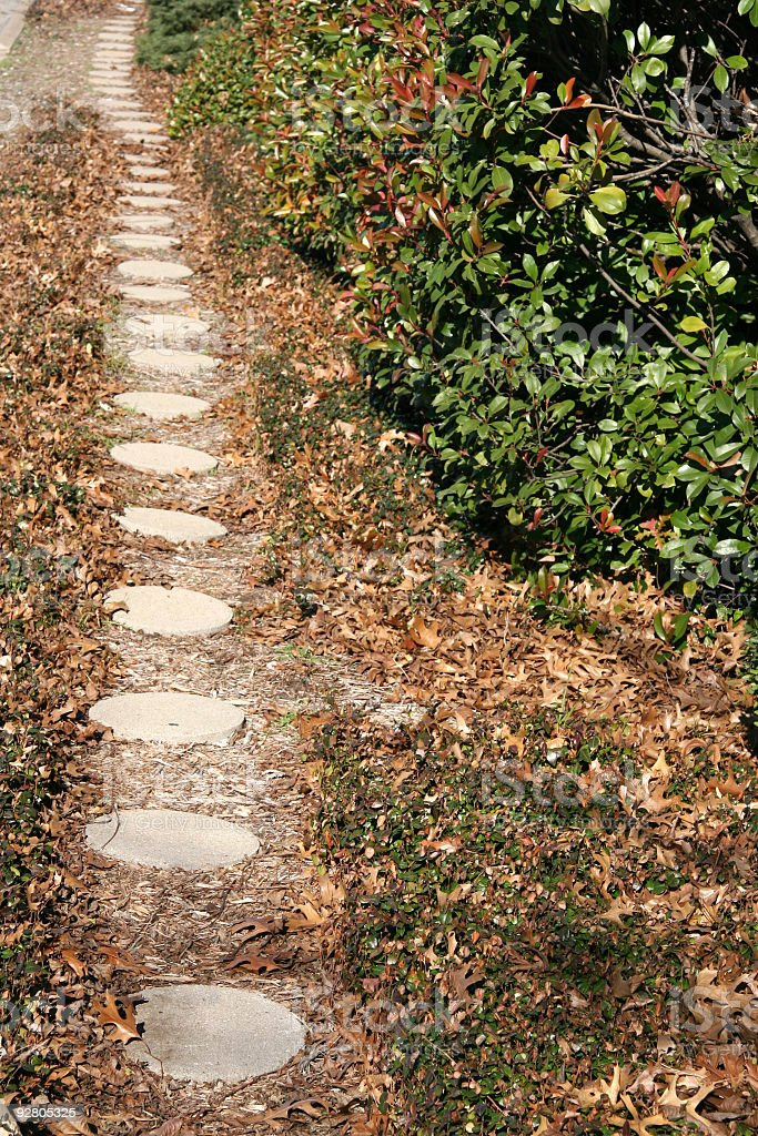 Long Pathway stock photo