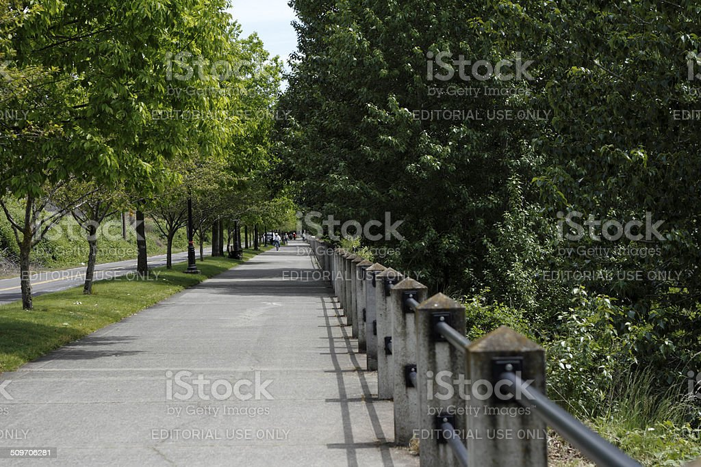 Long Public Sidewalk in Nature stock photo
