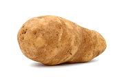 long russet potato