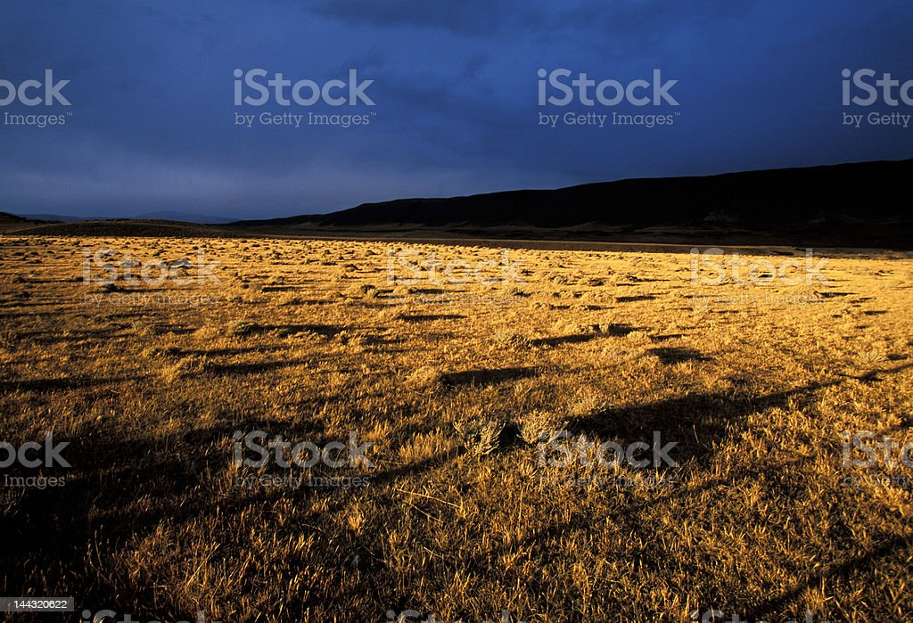 long shadows in a Patagonia sunset royalty-free stock photo