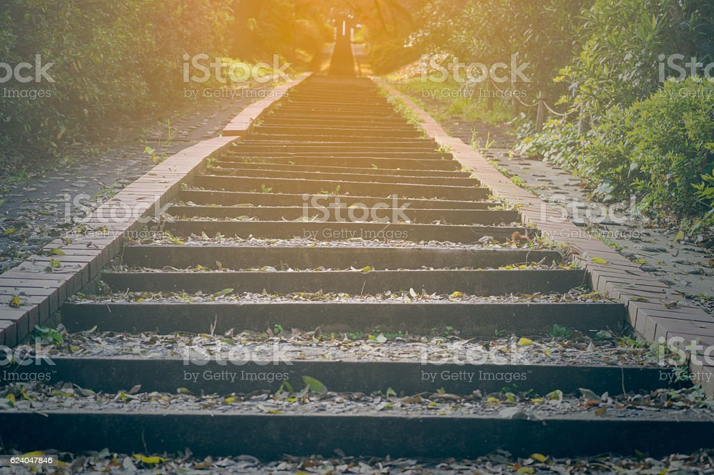 Long steps in the wood at sunset stock photo