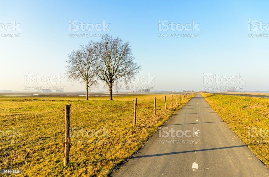 Long straight bike path in a Dutch polder landscape stock photo