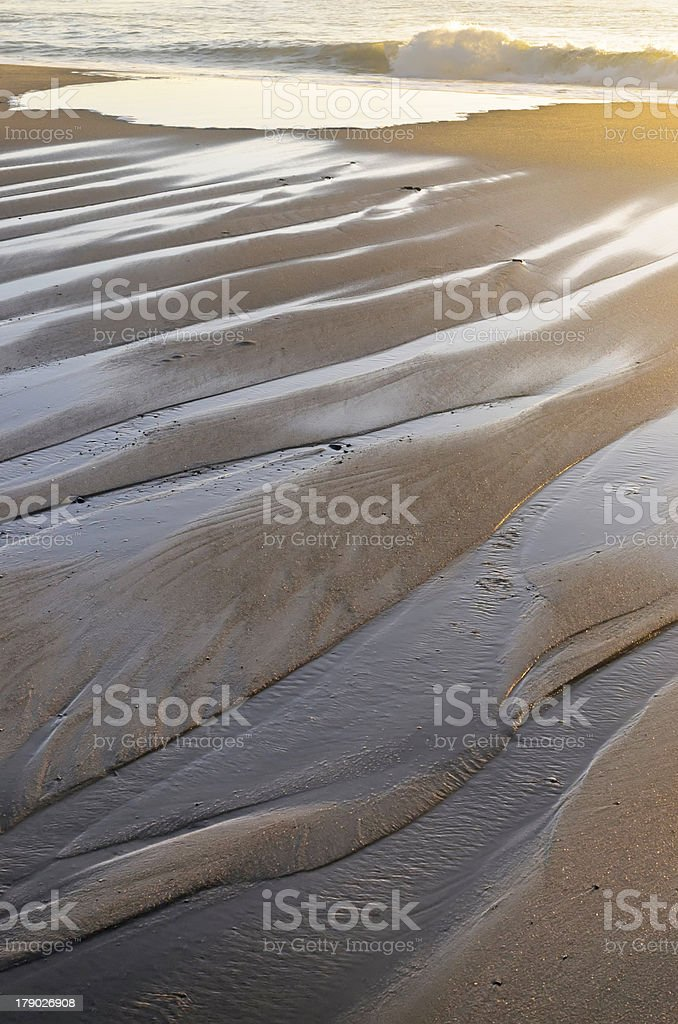 Long wet fingers of morning tide royalty-free stock photo