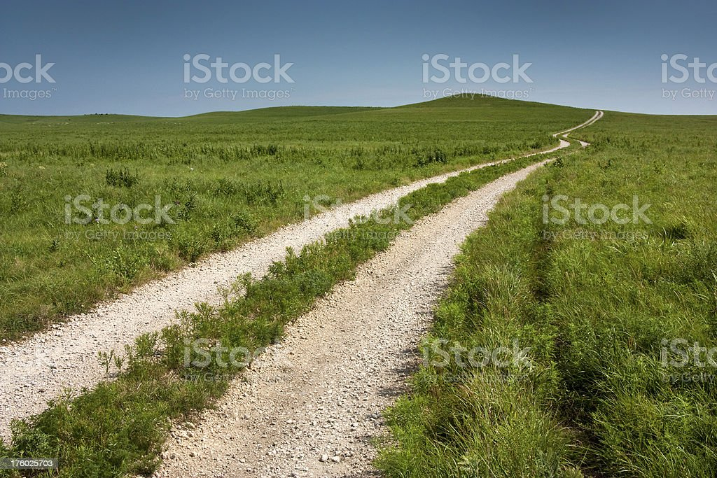Long winding country road through tall grass prairie pasture stock photo
